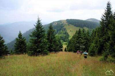 Cesta z vrchu Zvolen