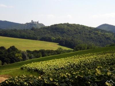 Pohľad na Čachtický hrad od Vaďoviec