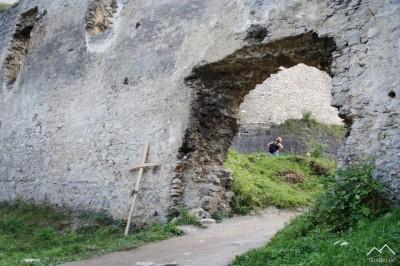 Vstupná brána