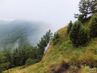 Stražovské vrchy