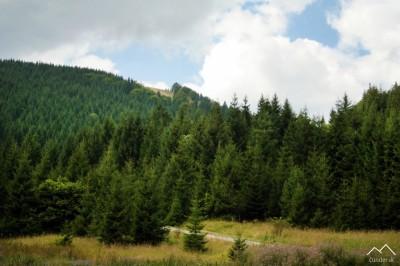 V pozadí vrch Malinné