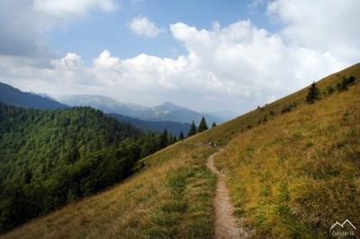 Ku Skalnej Alpe