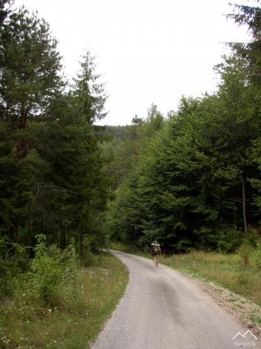 Cesta na Brezovú pod Bradlom